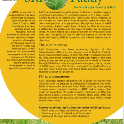 sri-paddy-factsheet