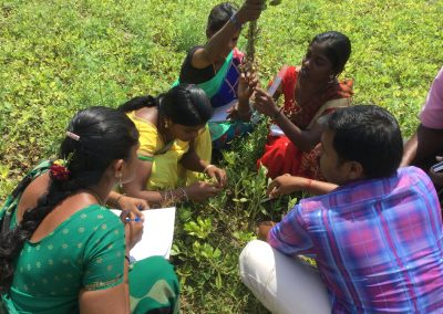 Improving small farmer livelihoods in rainfed areas through climate resilient farming practices